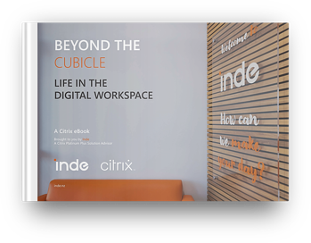 Inde eBook -Beyond the cubicle 3D cover